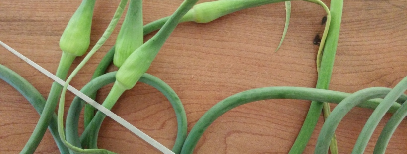 garlic scapes and a knife on a cutting board